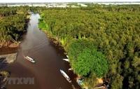 Ảnh Đồng bằng sông Cửu Long (Nguồn: TTXVN)