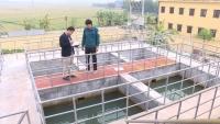 Nhà máy nước sạch ở Trung Hưng (Yên Mỹ) cung cấp nước sạch cho nhiều hộ dân.