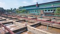 Hệ thống xử lý nước thải của Công ty CP Giấy Hoàng Văn Thụ.