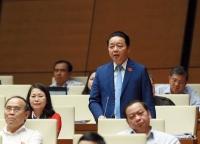 Bộ trưởng Bộ Tài nguyên và Môi trường Trần Hồng Hà trả lời chất vấn đại biểu Quốc hội ngày 31/10. Ảnh: Quốc Khánh