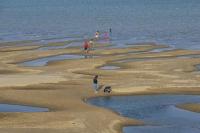 Tình trạng các con sông bị cạn nước tại Thái Lan. (Ảnh: AP)