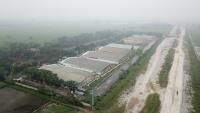 Khu chăn nuôi lợn của công ty Đông Xuân và Công ty C.P nhiều năm qua xả thải gây ô nhiễm môi trường.