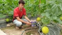 Để tiết kiệm nước tưới, tỉnh Thanh Hóa đã và đang áp dụng công nghệ sản xuất nông nghiệp theo tiêu chuẩn VietGAP như: Đầu tư xây dựng khu nhà màng, nhà lưới...