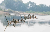 """""""Trận địa"""" cọc tre được người dân đóng trên sông Bồ"""