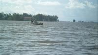 Mực nước đầu nguồn Sông Cửu Long tiếp tục lên trong những ngày tới. Ảnh minh họa