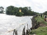 Nước biển đe dọa đê biển Tây Vàm Rầy ở Kiên Giang.