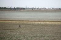 Một người đàn ông đi qua hồ chứa nước Puzhal khô cạn ở ngoại ô thành phố Chennai, Ấn Độ vào ngày 20/6/2019. Ảnh: Reuters / P. Ravikumar