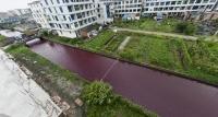 Trung Quốc: Nước sông đổi sang màu máu
